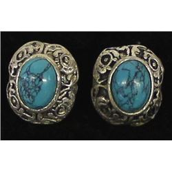 Sterling Stabilized Turquoise Post Earrings