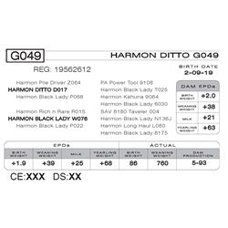 HARMON DITTO G049