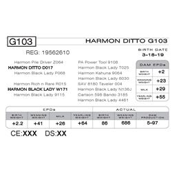 HARMON DITTO G103