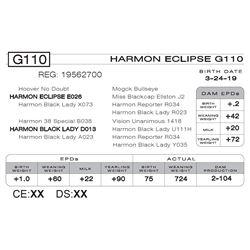 HARMON ECLIPSE G110