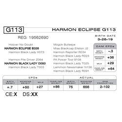 HARMON ECLIPSE G113