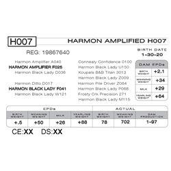 HARMON AMPLIFIED H007