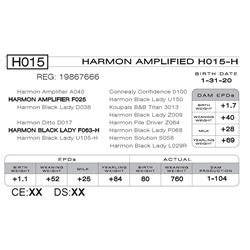 HARMON AMPLIFIED H015- H