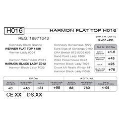 HARMON FLAT TOP H016