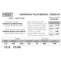 HARMON PLAYBOOK H020- H