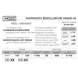 HARMON EXCLUSIVE H022- H
