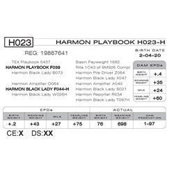 HARMON PLAYBOOK H023- H