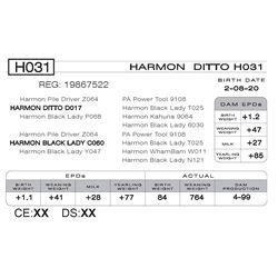 HARMON DITTO H031