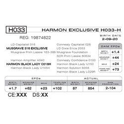 HARMON EXCLUSIVE H033- H