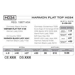 HARMON FLAT TOP H034