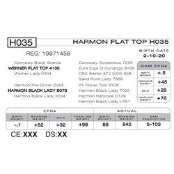 HARMON FLAT TOP H035