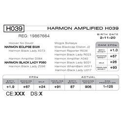 HARMON AMPLIFIED H039