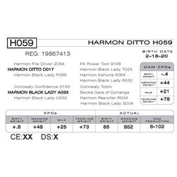 HARMON DITTO H059