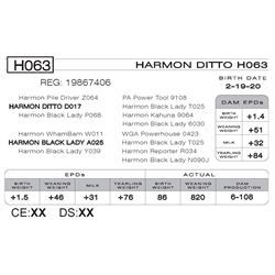 HARMON DITTO H063