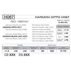 HARMON DITTO H067