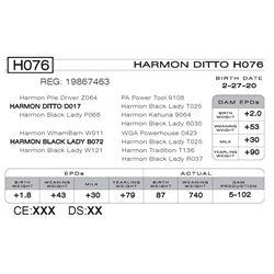 HARMON DITTO H076