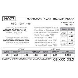 HARMON FLAT BLACK H077