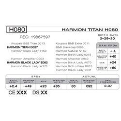 HARMON TITAN H080