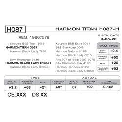 HARMON TITAN H087- H
