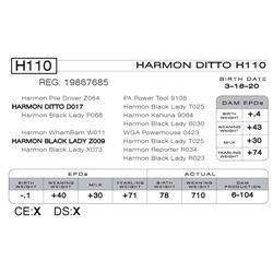 HARMON DITTO H110