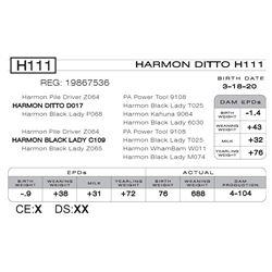 HARMON DITTO H111