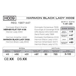 HARMON BLACK LADY H009