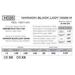 HARMON BLACK LADY H026- H
