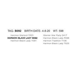 HARMON BLACK LADY B092