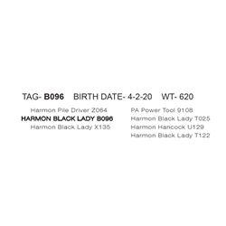 HARMON BLACK LADY B096