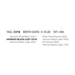 HARMON BLACK LADY C016