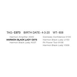 HARMON BLACK LADY C073