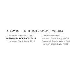 HARMON BLACK LADY Z115
