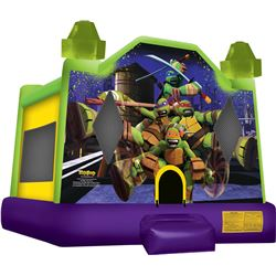 13' Teenage Mutant Ninja Turtle Jumper