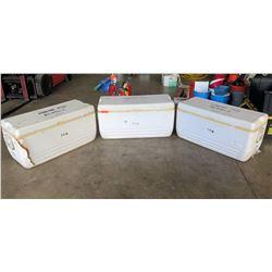 Qty 3 - Large Igloo Coolers.