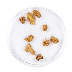 Lot of Gold Nuggets 3.61 Grams Total Weight