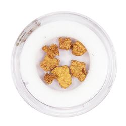 Lot of Gold Nuggets 1.10 Grams Total Weight