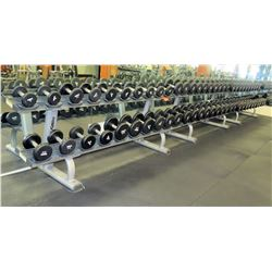 Huge Set of Dumbells (Approx. 60) with Life Fitness Rack
