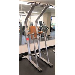 Life Fitness Chin/Dip/Leg Raise, Model SCDLR-0102