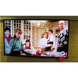 "Sony 60"" Wall-Mount TV (does not include wall mount)"