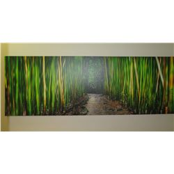 Zen Bamboo Art on Canvas
