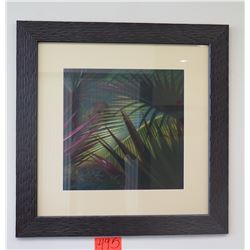 Framed Photographic Print - Palm Foliage