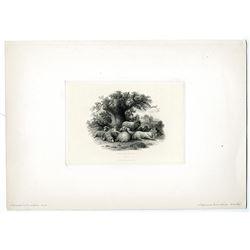 "James Smillie Proof Engraving of ABNC Intaglio Vignette ""Sheep Under the Oak"" ca.1860-70's."
