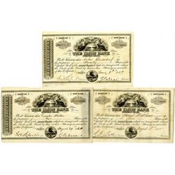 Ilion Bank Stock Certificate Trio, ca.1855 to1861