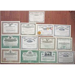 Pennsylvania Banking Stock Certificate Group of 13 I/U, I/C and U/U ca.1900-1940