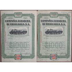 Compania Ganadera de Chihuahua, 1911 Share Certificate Pair.