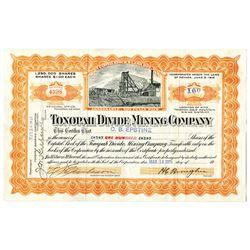 Tonopah Divide Mining Co. 1919 I/U Stock Certificate