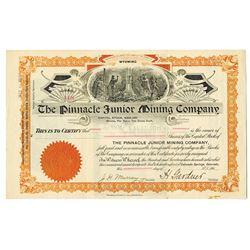Pinnacle Junior Mining Co. 1901 I/U Stock Certificate