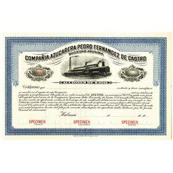 Compania Azucarera Pedro Fernandez de Castro, 1900-1920 Specimen Stock Certificate.