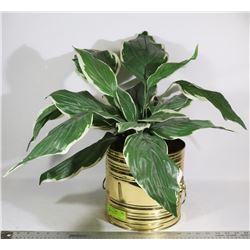POTTED SILK PLANT