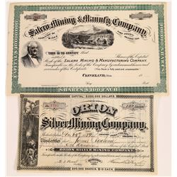 Two Different Pima County Mining Stock Certificates  (113805)